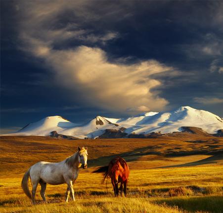 Trekking dans l'Altaï