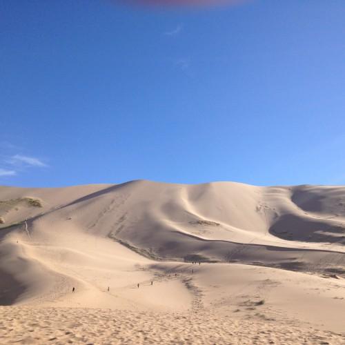 142 Dunes Khongor Desert Gobi
